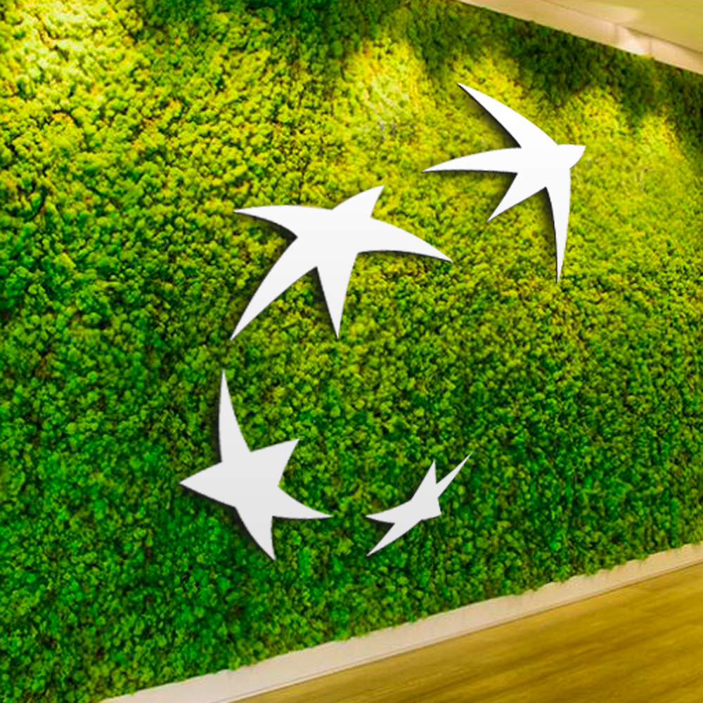 BNP Paribas Fortis concept wall